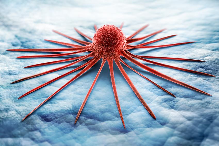 Krebs – einfach nur Pech?