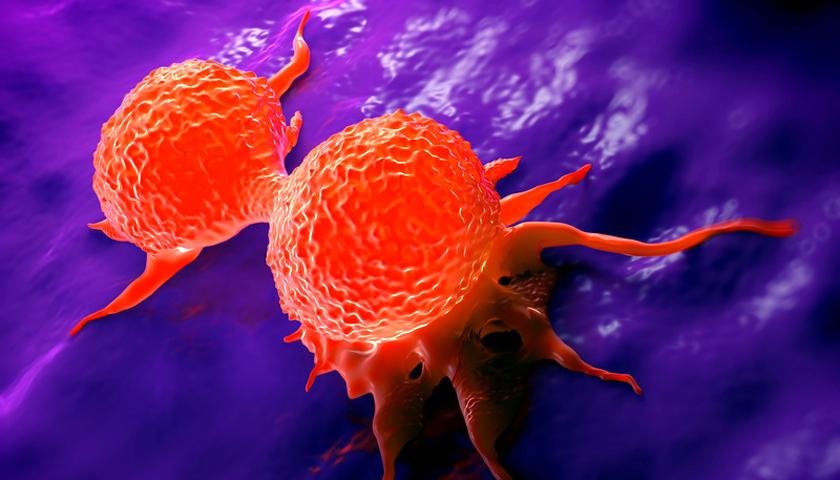 Krebs: Tumor weg in 11 Tagen