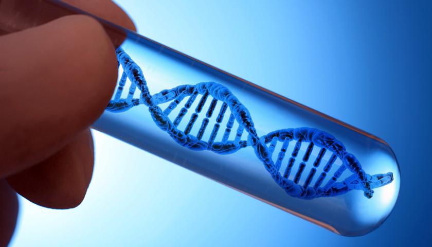 CRISPR/Cas9 – Genschere bei erstem Krebspatienten